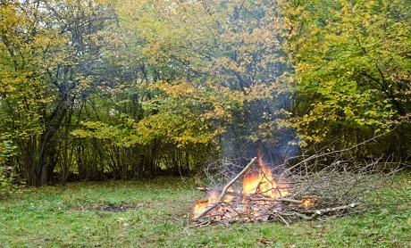 Eldning av torra kvistar